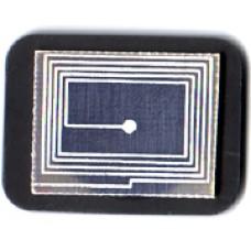 Bio čip